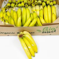 Banane Cavendish Bio Bio'Select Open-Top