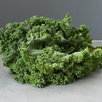 Chou - Kale - Vert - FRA - Rais