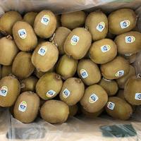 Kiwi  Green 3 kg