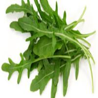 Salade Roquette  500 Gr