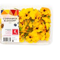 Cornabria Blossom Hollande, Colis De 2 Barquettes De 50 Fleurs