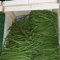 HARICOT VERT TRES FIN, colis de 4kg