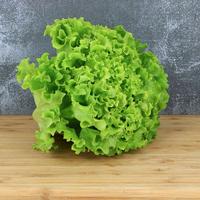 Salade batavia  M catégorie 1, colis de 12 pièces