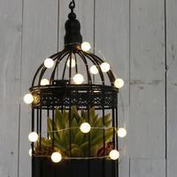 Cage D'Oiseaux Pour Plantes Ref 29500