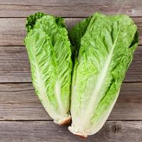 Salade cœur de romaine catégorie 1, colis de 2 barquettes de 8 pièces