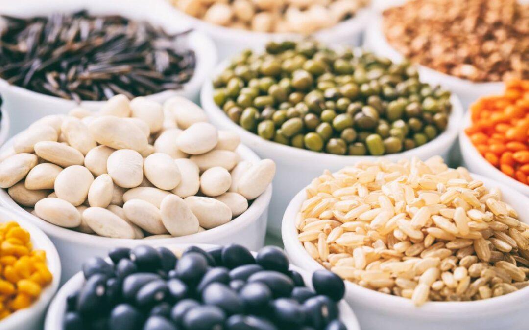 Protéines végétales : quels bienfaits ?