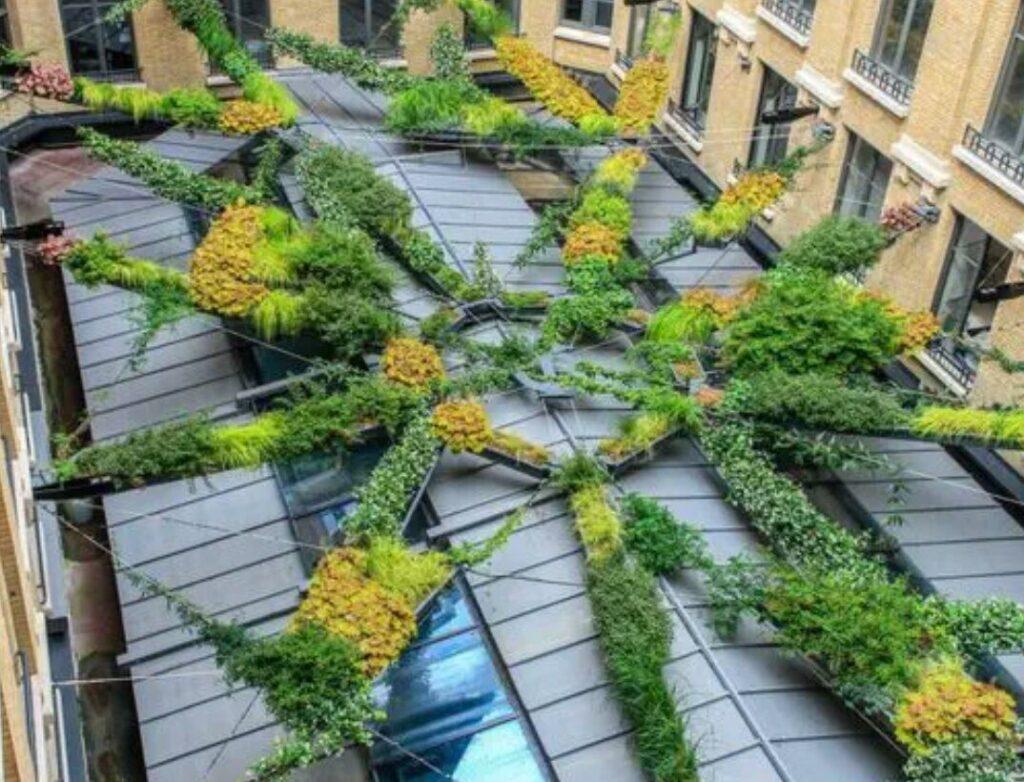 jardin en toit