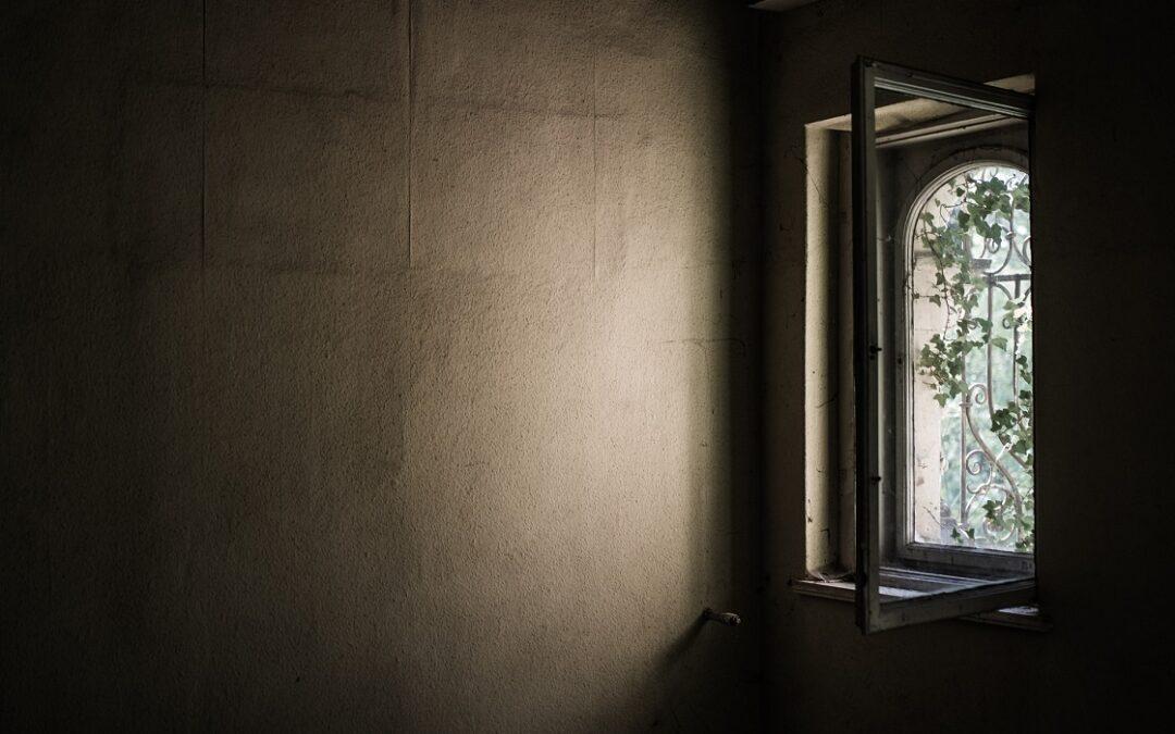 Les principales tendances en matière de fenêtres que les designers d'intérieur devraient surveiller