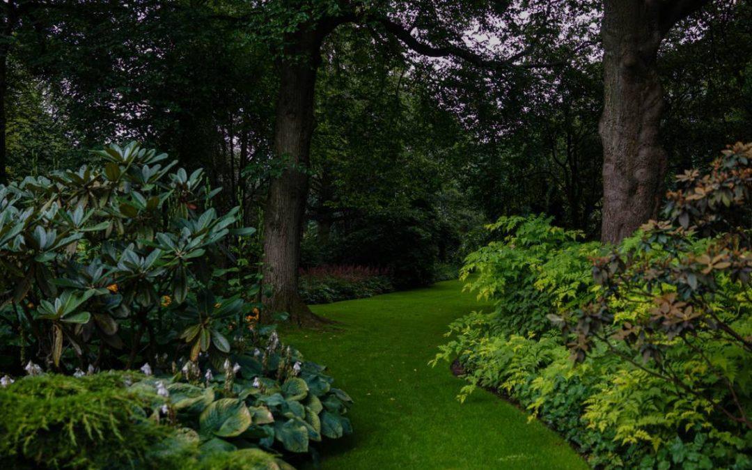 Paysagisme : pour un jardin harmonieux