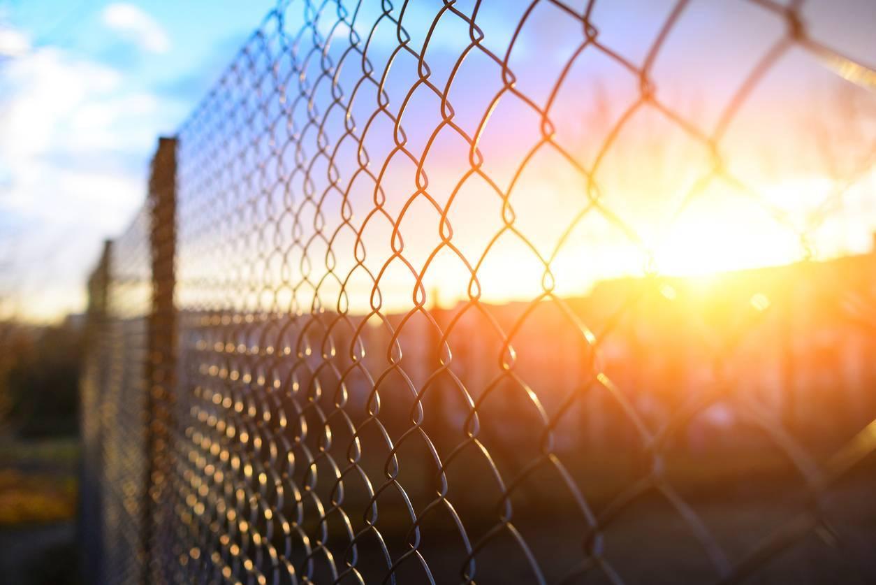 clôture grillage rigide