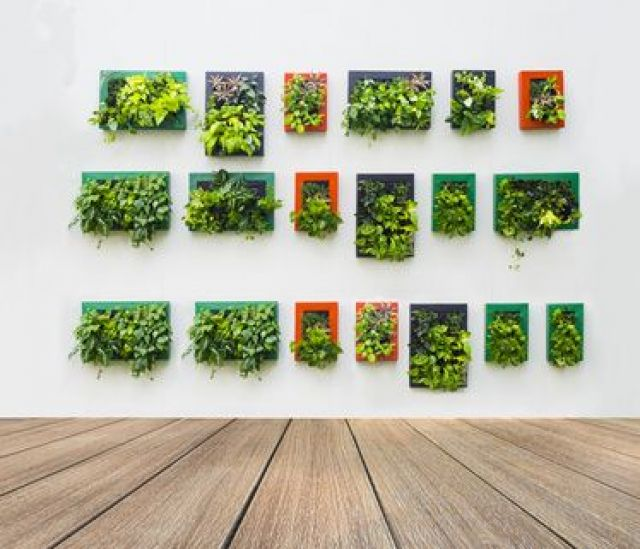 decoration ur végétal
