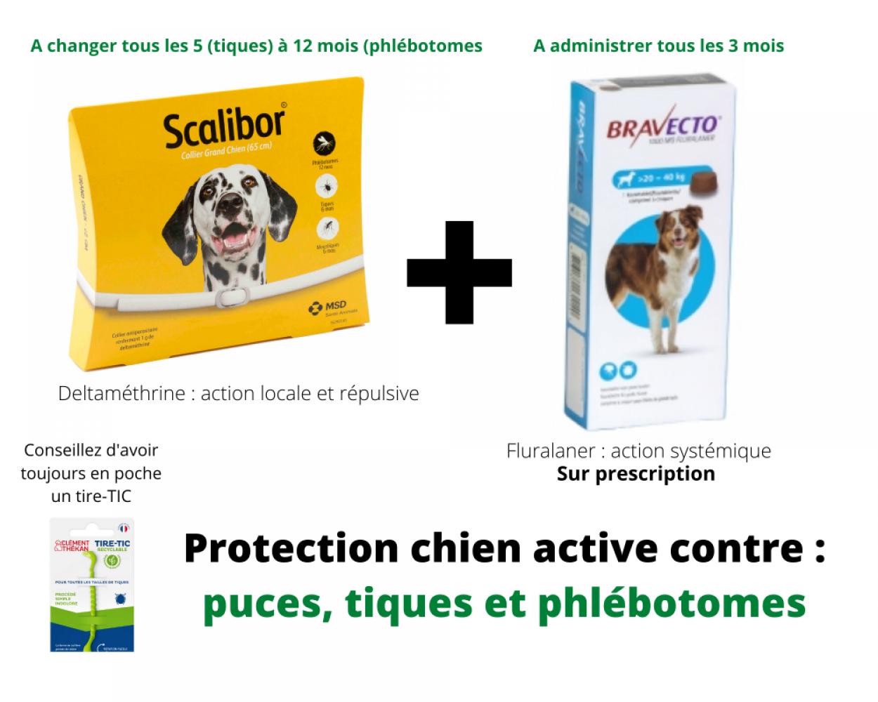 Scalibor + Bravecto