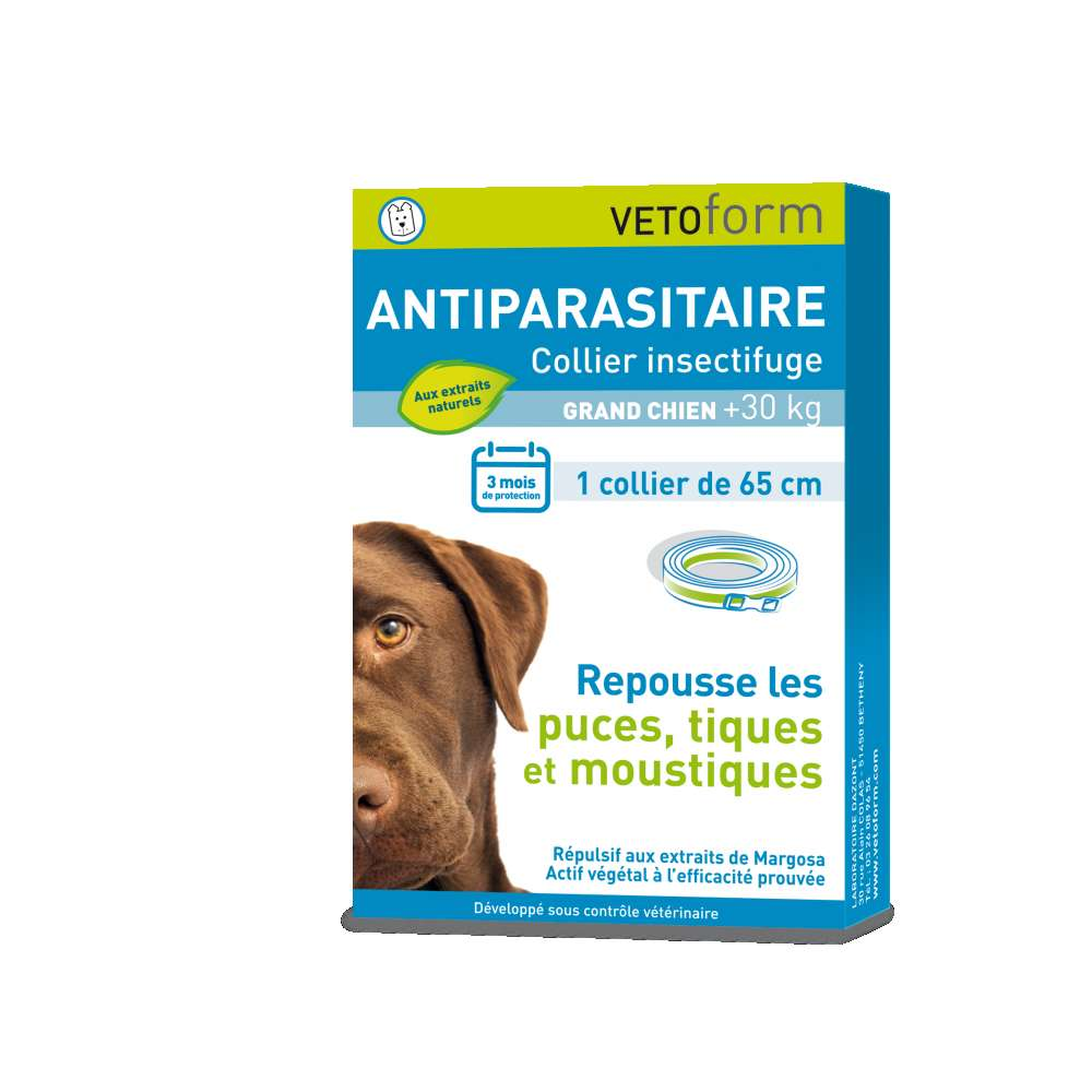 Collier insectifuge pour GRAND CHIEN