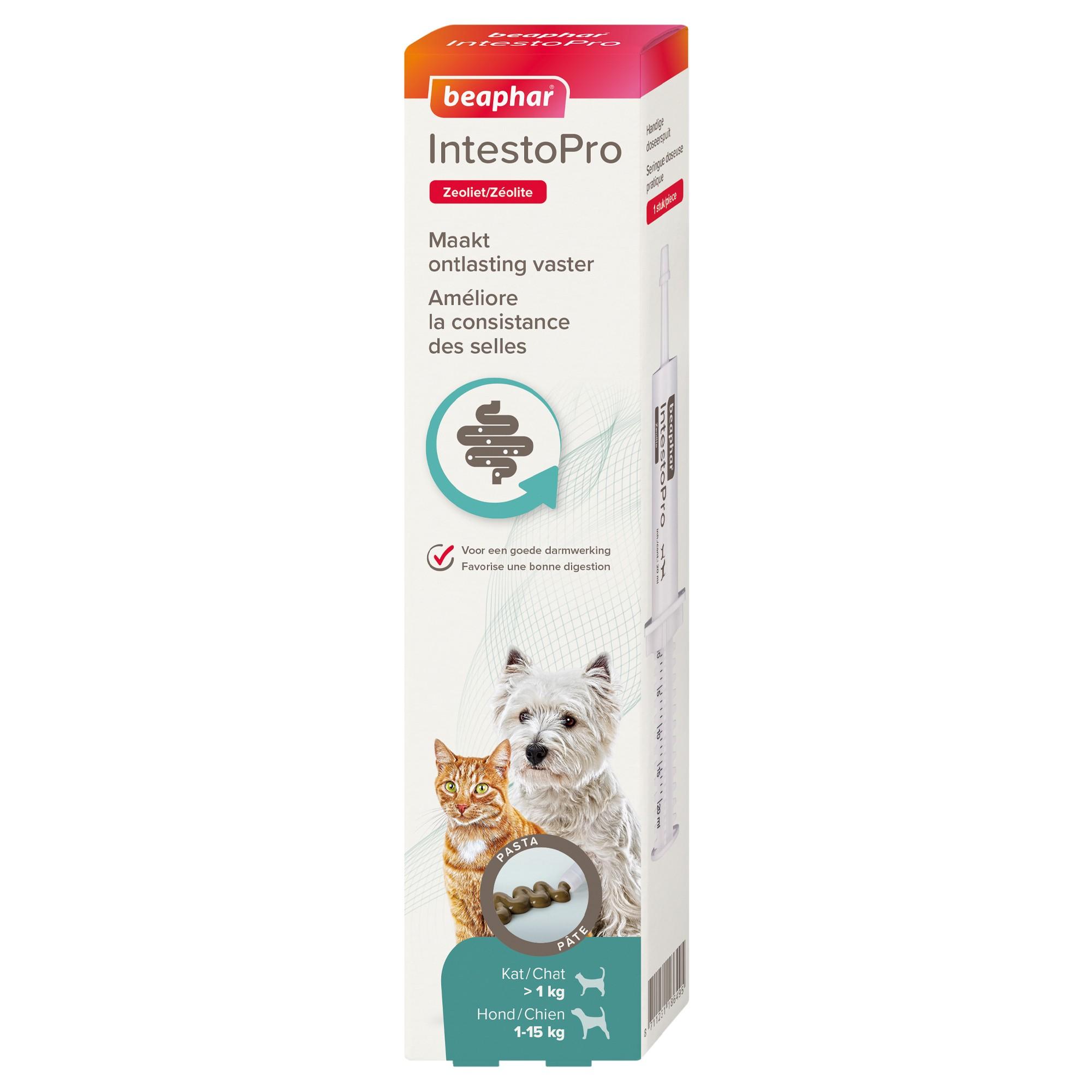 IntestoPro, pâte pour améliorer la consistance des selles pour chats et petits chiens