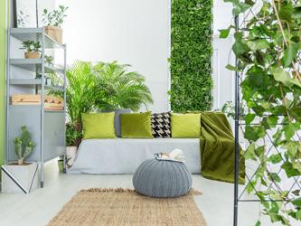 maison avec mur végétal