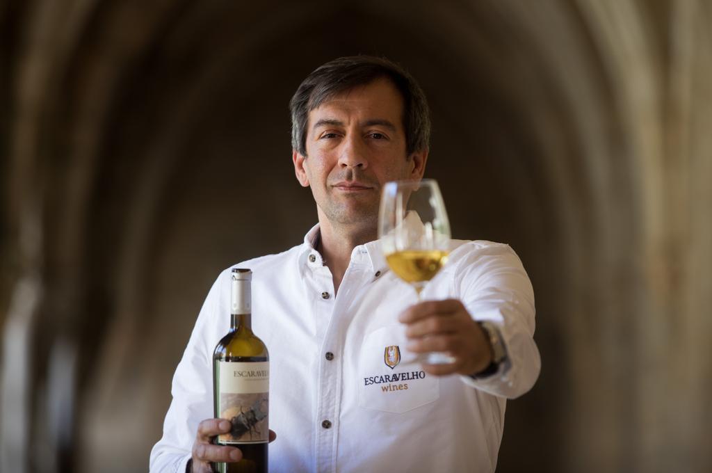 Escaravelho Wines | VivaoVinho.Shop