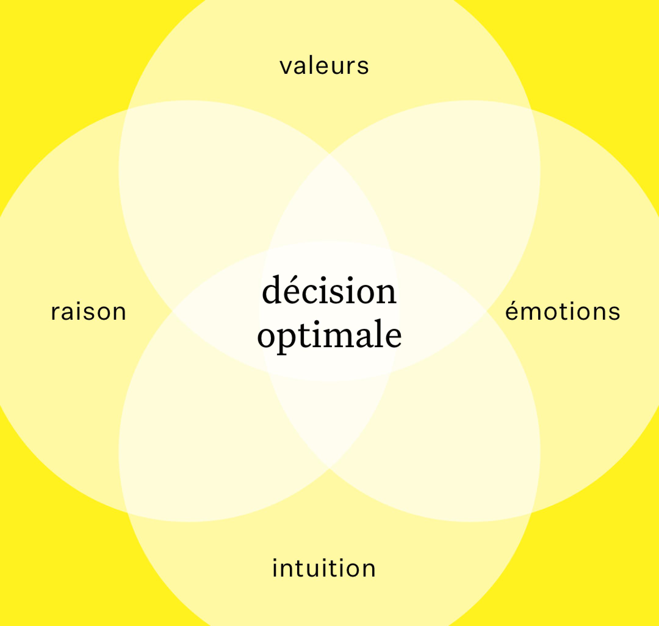 Modèle de prise de décision Chance coaching professionnel